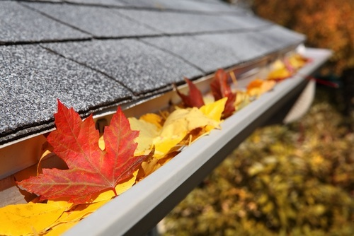 October Is Here! Fall Maintenance Reminders